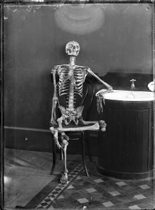 Esqueleto articulado sentado en una silla.